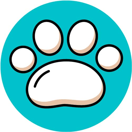 Ecomency Pet Shop || Dispensing Comfort for Gyrating Tails - Trending Pet store
